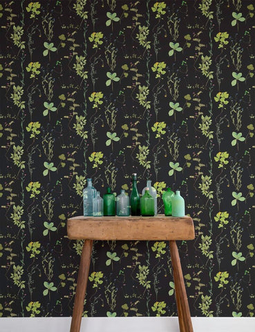 Herbario Wallpaper in Botanical design by Aimee Wilder