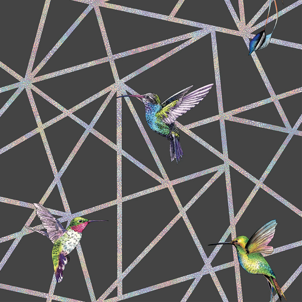 Sample Holographic Hummingbirds Wallpaper in Black by Walls Republic