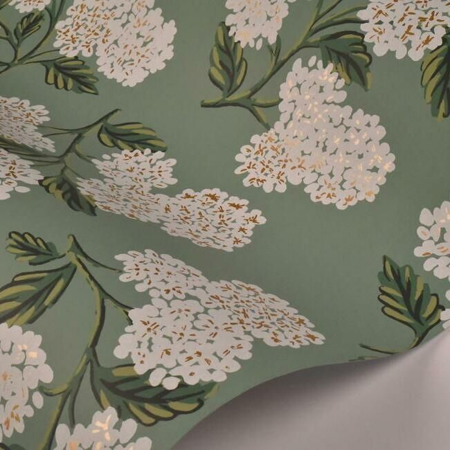 Hydrangea Wallpaper in Jade from the Rifle Paper Co. Collection by York Wallcoverings
