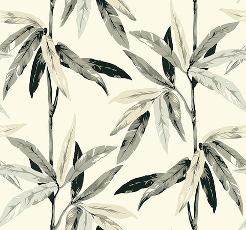 Janson Floral Wallpaper in Metallic, Black, and Ivory by Carl Robinson for Seabrook Wallcoverings