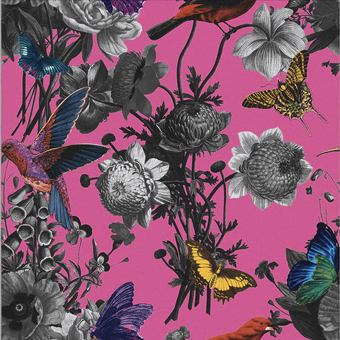 Jardin Wallpaper in Magenta from the Exclusives Collection by Graham & Brown