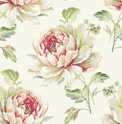 Jarrow Floral Wallpaper in Ivory and Reds by Carl Robinson for Seabrook Wallcoverings