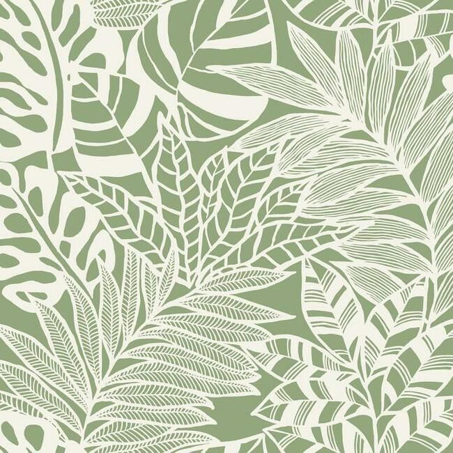 Sample Jungle Leaves Wallpaper in Green from the Silhouettes Collection by York Wallcoverings