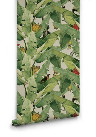 Sample Jungle Fever Wallpaper from the Kingdom Home Collection by Milton & King