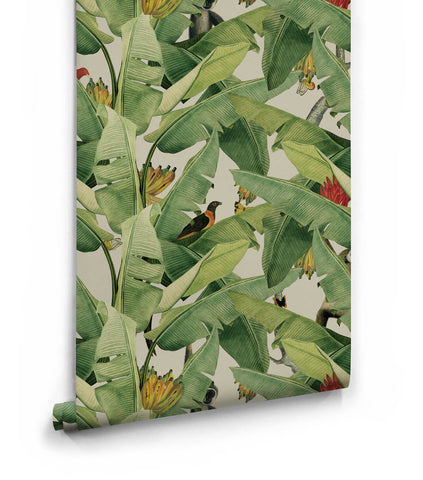 Jungle Fever Wallpaper from the Kingdom Home Collection by Milton & King