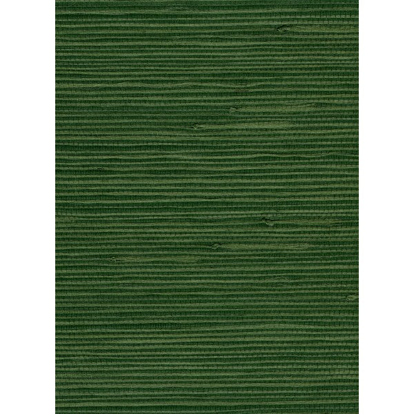 Jute Grasscloth Wallpaper in Dark Green from the Natural Resource Collection by Seabrook Wallcoverings