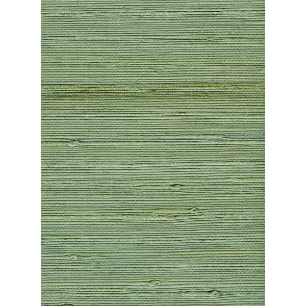 Jute Grasscloth Wallpaper in Green from the Natural Resource Collection by Seabrook Wallcoverings