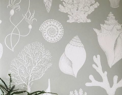Sample Katie Scott Wallpaper in Shells Aqua