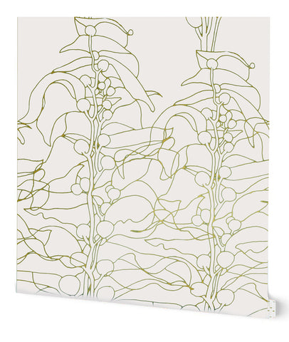 Kelp Forest Wallpaper in Cream on Gold by Tommassini Walls