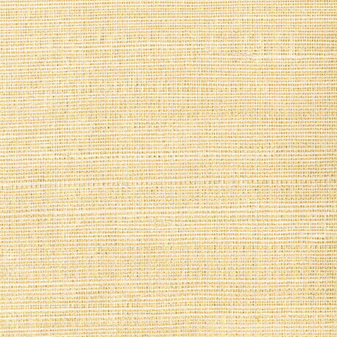 Klaudia Champagne Foil Grasscloth Wallpaper from the Jade Collection by Brewster Home Fashions