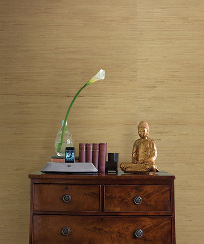 Kostya Beige Grasscloth Wallpaper from the Jade Collection by Brewster Home Fashions