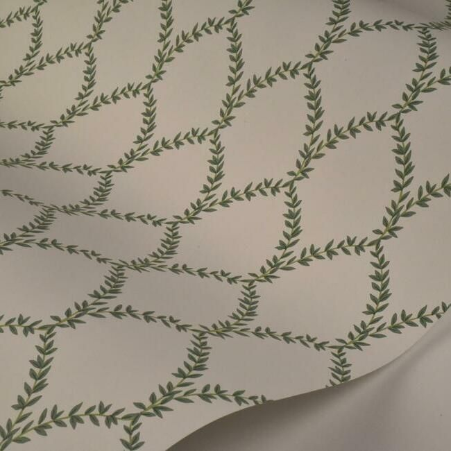Laurel Wallpaper in Green and White from the Rifle Paper Co. Collection by York Wallcoverings