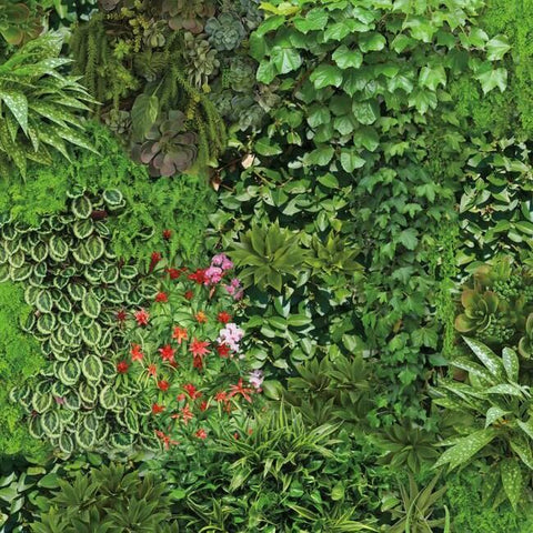 Living Wall Peel & Stick Wallpaper in Green and Black by RoomMates for York Wallcoverings