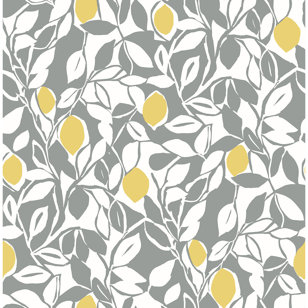 Sample Loretto Citrus Wallpaper in Grey from the Pacifica Collection by Brewster Home Fashions