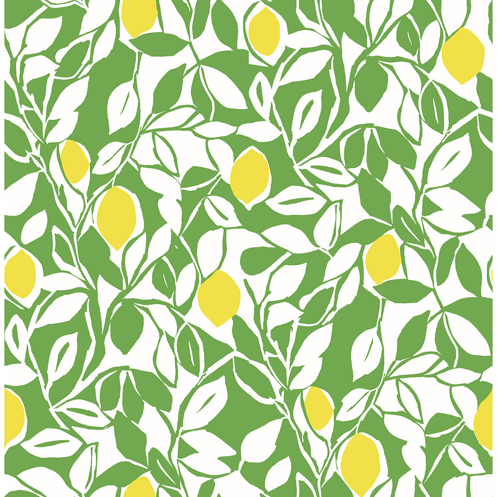 Sample Loretto Citrus Wallpaper in Lime from the Pacifica Collection by Brewster Home Fashions