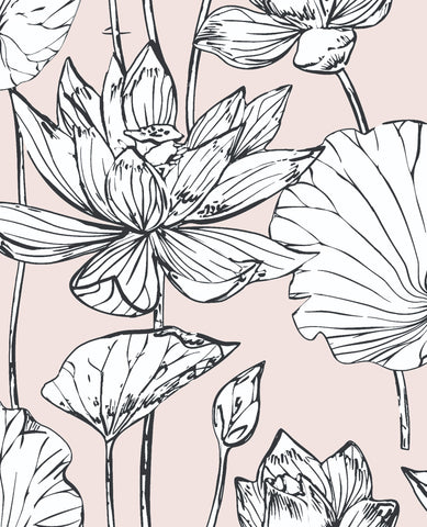 Lotus Floral Peel-and-Stick Wallpaper in Blush and Ebony by NextWall