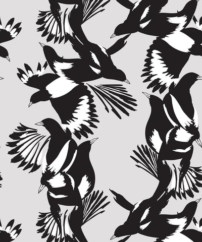 Magpie Wallpaper in Black and White from the Kingdom Home Collection by Milton & King