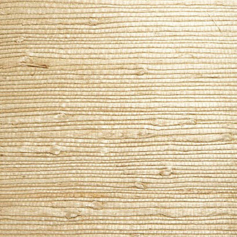 Martina Beige Grasscloth Wallpaper from the Jade Collection by Brewster Home Fashions