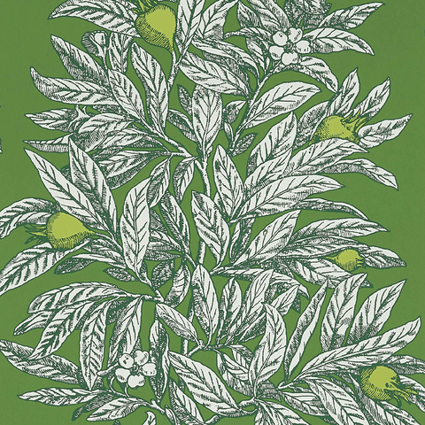 Medlar Wallpaper in Garden Green and Lime from the Mansfield Park Collection by Osborne & Little