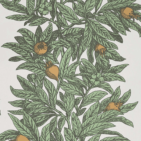 Medlar Wallpaper in Sage and Amber from the Mansfield Park Collection by Osborne & Little
