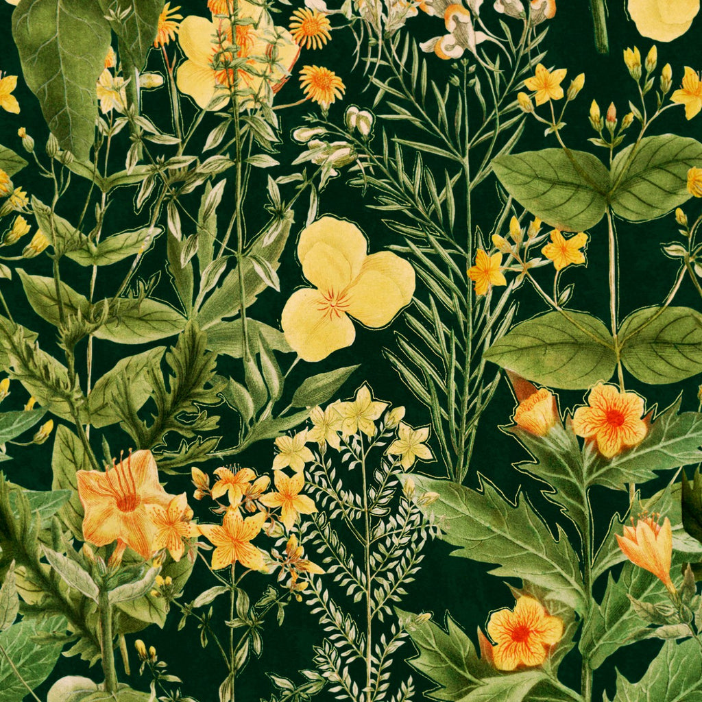 Sample Mimulus Wallpaper in Green and Yellow from the Florilegium Collection by Mind the Gap
