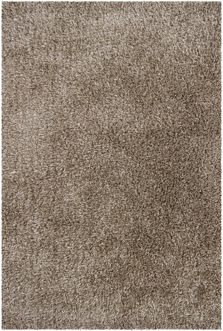 Orchid Collection Hand-Woven Area Rug in Taupe design by Chandra rugs
