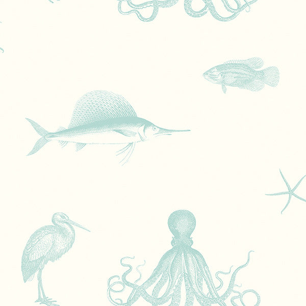 Sample Oceania Aqua Sea Creature Wallpaper from the Seaside Living Collection by Brewster Home Fashions