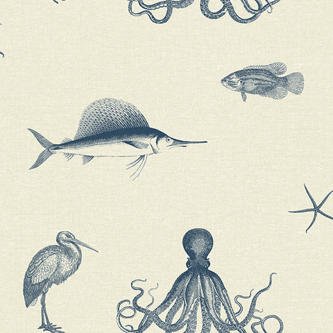 Oceania Navy and Taupe Sea Creature Wallpaper from the Seaside Living Collection by Brewster Home Fashions