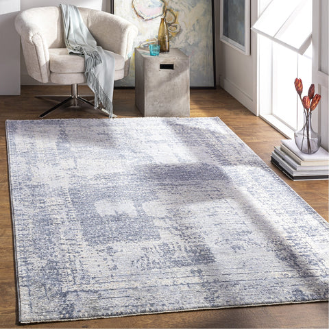 Presidential PDT-2320 Rug in Medium Grey & Bright Blue by Surya