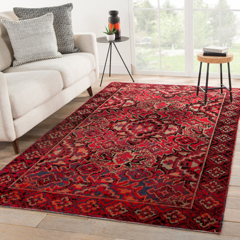 Chaya Indoor/ Outdoor Medallion Red & Black Area Rug