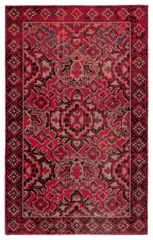 Chaya Indoor/ Outdoor Medallion Red/ Black Rug design by Jaipur