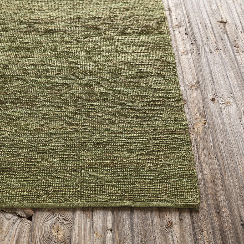 Pricol Collection Hand-Woven Area Rug in Green design by Chandra rugs