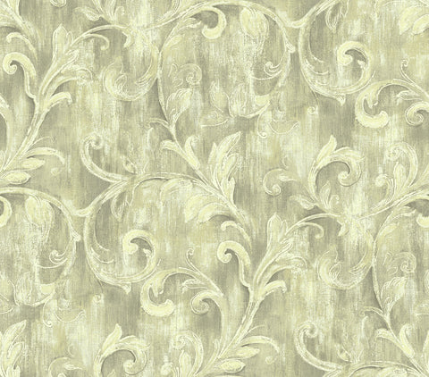 Painterly Acanthus Wallpaper in Lustrous from the Nouveau Collection by Wallquest