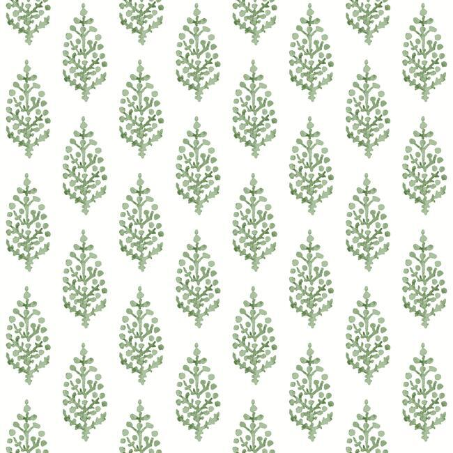 Sample Paisley On Calico Wallpaper in Green from the Simply Farmhouse Collection by York Wallcoverings