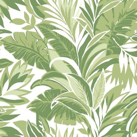 Palm Silhouette Wallpaper in Green from the Conservatory Collection by York Wallcoverings