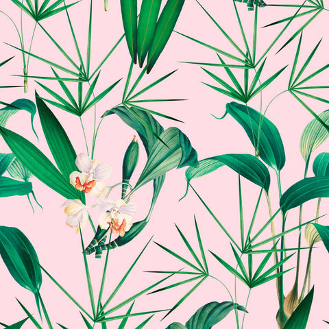 Palm Springs Wallpaper in Green and Pink from the Palm Springs Collection by Mind the Gap
