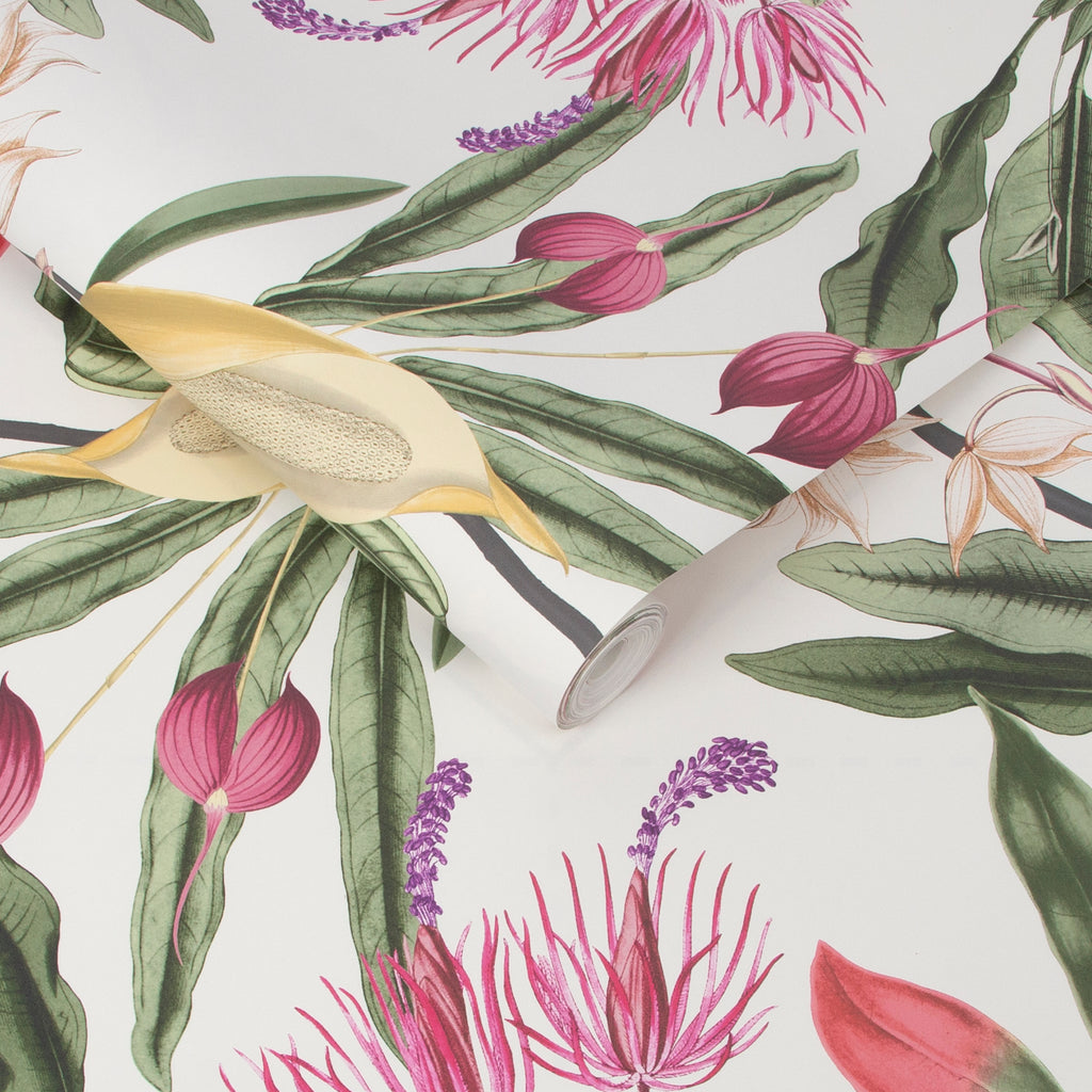 Paradise Wallpaper in Chalk from the Exclusives Collection by Graham & Brown
