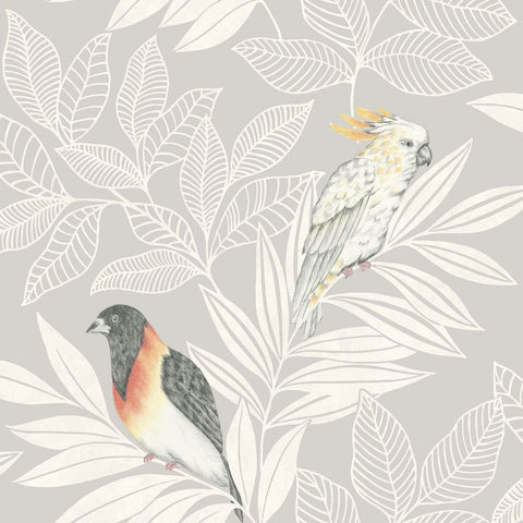 Paradise Island Birds Wallpaper in Daydream Grey and Ivory from the Boho Rhapsody Collection by Seabrook Wallcoverings