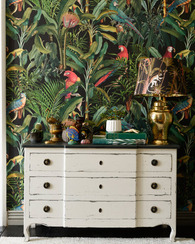 Parrots of Brazil Wallpaper in Anthracite from the Wallpaper Compendium Collection by Mind the Gap