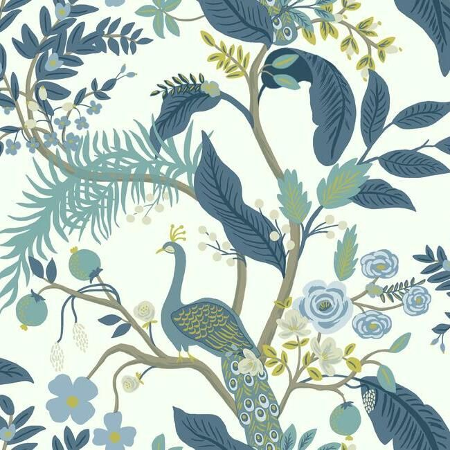 Sample Peacock Wallpaper in Blue and White from the Rifle Paper Co. Collection by York Wallcoverings