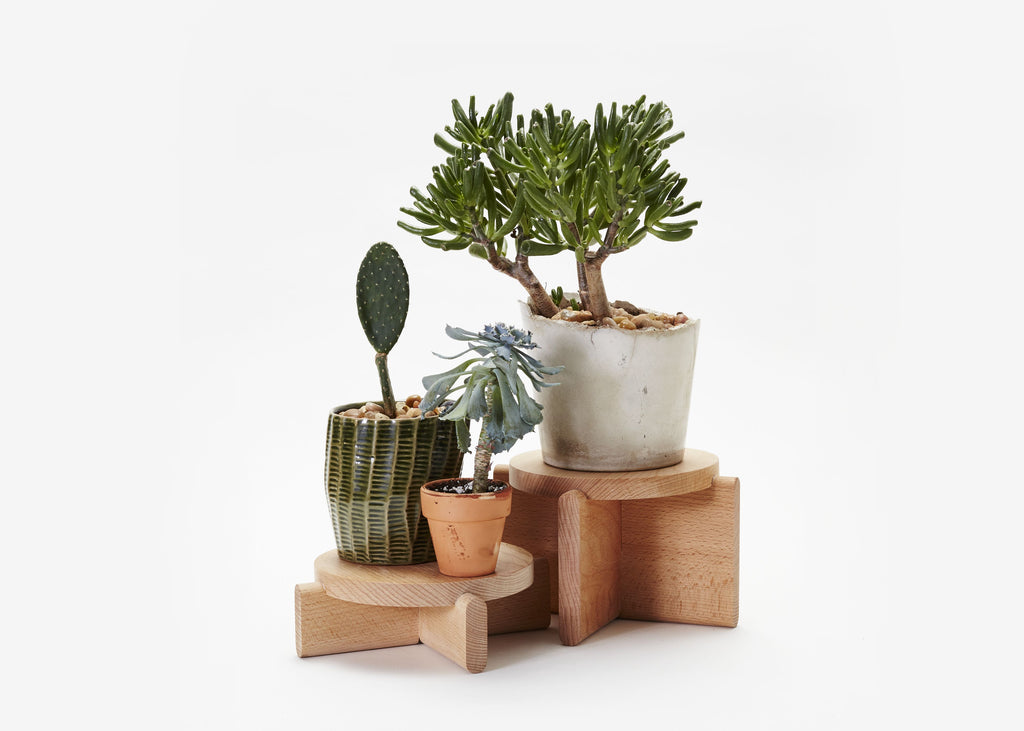 Set of 2 Plant Pedestals design by Areaware