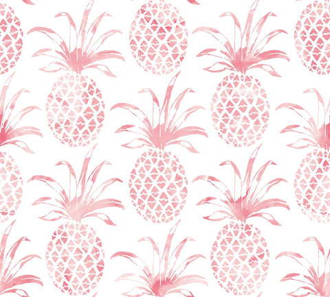 Pina Pintada Wallpaper in Flamingo design by Aimee Wilder