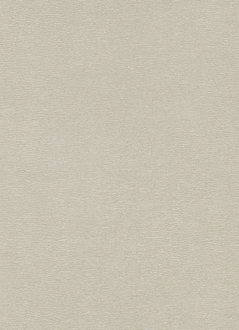 Plains Wallpaper in Taupe design by BD Wall