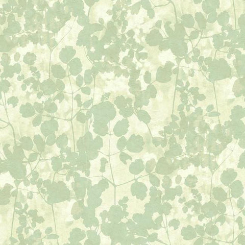 Pressed Leaves Wallpaper in Green from the Botanical Dreams Collection by Candice Olson for York Wallcoverings