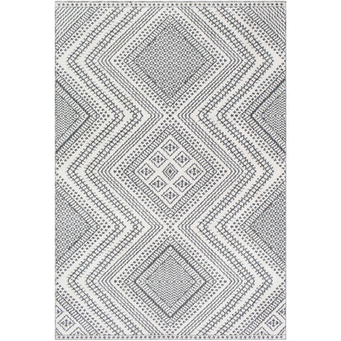 Ariana RIA-2302 Rug in Charcoal & White by Surya