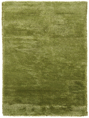 Royal Collection Hand-Woven Area Rug in Green design by Chandra rugs