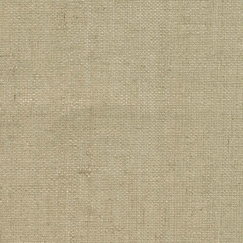 Ruslan Light Green Grasscloth Wallpaper from the Jade Collection by Brewster Home Fashions