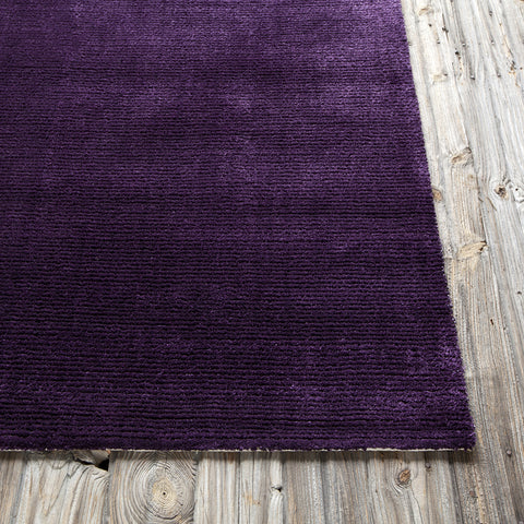 Sara Collection Hand-Woven Area Rug in Purple design by Chandra rugs