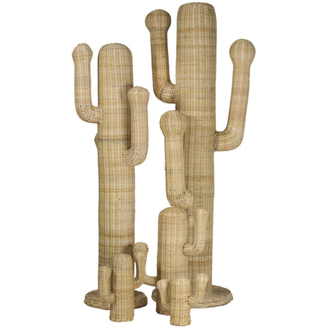 Sonora Cactus in Various Sizes design by Selamat