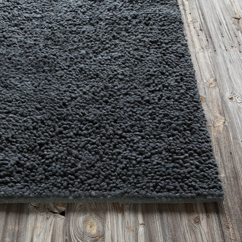 Strata Collection Hand-Woven Area Rug in Black design by Chandra rugs